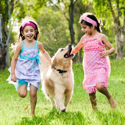 Best Friends Animal Hospital - Girls & Dog